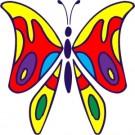Associazione Casa delle Farfalle
